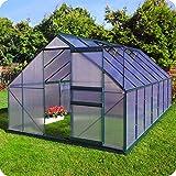 Aluminium Gewächshaus mit Fundament verschiedene Modelle Treibhaus Garten Pflanzenhaus Alu Tomatenhaus (250x430, Grün)