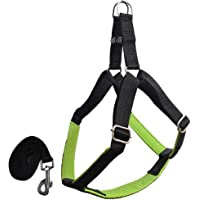 Pawzone Durable & Adjustable Green Body Harness with Leash for Dogs(1 Inch) - Large (Chest Size : 30-37 inch)