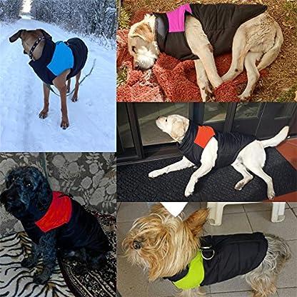 Treat Me Winter Dog Coat Warm Pet Jacket Raincoat of Nylon Fabric Cotton Filler Waterproof Protective Adjustable 4