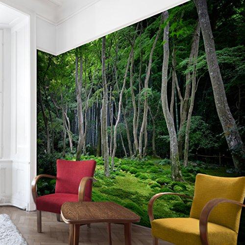 Waldtapete – Vliestapete – Japanischer Wald – Fototapete Wald Breit Vlies Tapete Wandtapete Wandbild Foto 3D Fototapete
