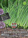 Sperli-Samen Schnitt-Knoblauch Fat Leaf