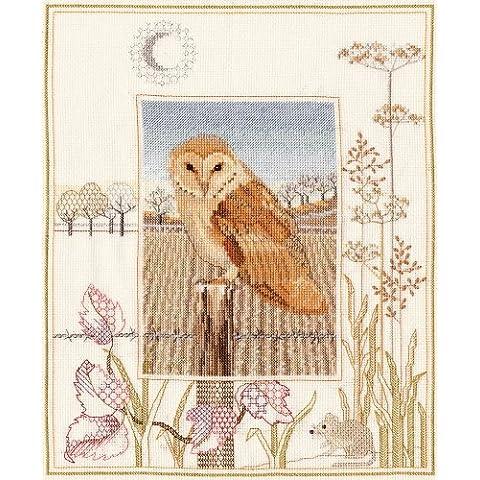 Derwentwater Wildlife Barn Owl Series-Kit per punto croce contato aida