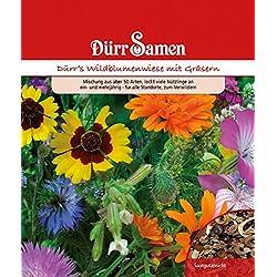 Dürr Samen 4322 Dürr's Wildblume- und Kräuterwiese 10 m² (Samenmischung)