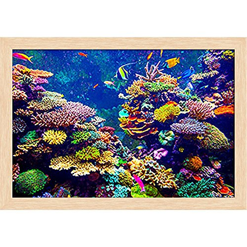 Pitaara Box Coral Reef & Tropical Fish In Sunlight Canvas Painting Natural Brown Frame 23.5 X 16Inch - Home Essentials Reef
