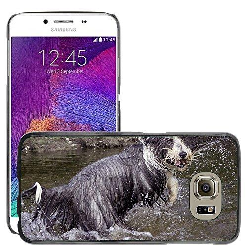 Nur Handy HOT STYLE HANDY PC Hard Case Cover//m00138686Bearded Collie Hund Wet komisch//Samsung Galaxy S6(passt nicht für (Passt Komisch)