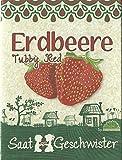 Die Stadtgärtner Erdbeere'Tubby Red'-Saatgut | Ideal zum Naschen | Samen für saftige rote Erdbeeren