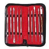 Denshine Set di 10 Attrezzi per Scultura Intagliata nella Cera in Acciaio Inox con Custodia, Laboratorio Dentale Apparecchiatura Cera Carving Tool Set 10 Pcs