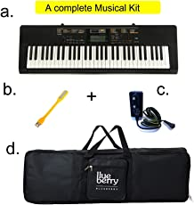 Casio & Blueberry Casio CTK2550 Digital Keyboard with Bag, Adapter and USB LED (Black)