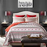 Qucover Gesteppte Tagesdecke 220 x 240 cm, Bettüberwurf für Doppelbett, Steppdecke Set mit Kissenbezug, Baumwolle Sommerdecke, mit Weihnachten Motiv - Nr. 8065897