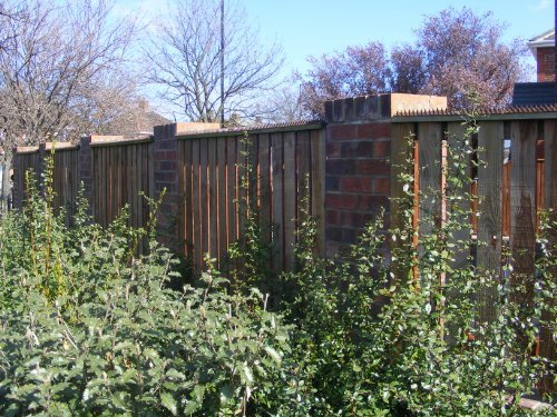 fence-wall-spikes-pack-of-10-45m-to-135m-brown