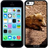 DesignedByIndependentArtists Coque Silicone pour Iphone 5C - Bébé Sanglier Adorable...