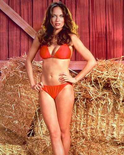 Moviestore Catherine Bach als Daisy Duke in The Dukes of Hazzard 50x40cm Farbfoto