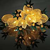 3D Hollowed-out Pineapple Shape Mood String Light Warm white LED Starry String Light, Fairy Light for Bedroom,Wedding,Xmas Party, Indoor Decor