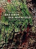 Das Leben der Mächtigen: Reisen zu alten Bäumen (Naturkunden)