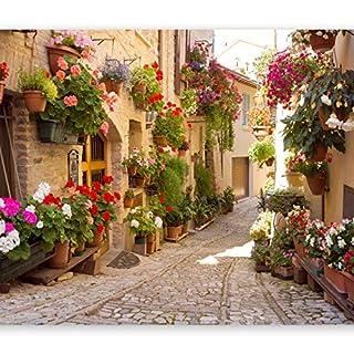 murando - Fototapete 350x256 cm - Vlies Tapete - Moderne Wanddeko - Design Tapete - Wandtapete - Wand Dekoration - Italien Toskana Gasse Stadt Ziegel Blumen d-B-0136-a-a
