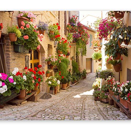 Toskana-streifen (murando - Fototapete 300x210 cm - Vlies Tapete - Moderne Wanddeko - Design Tapete - Wandtapete - Wand Dekoration - Italien Toskana Gasse Stadt Ziegel Blumen d-B-0136-a-a)