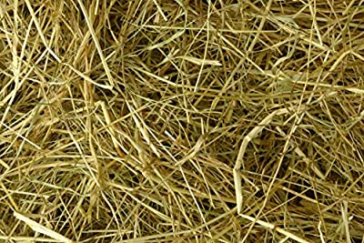 Pettex Compressed Meadow Hay Small Animal Beddings, X-Large by Pettex
