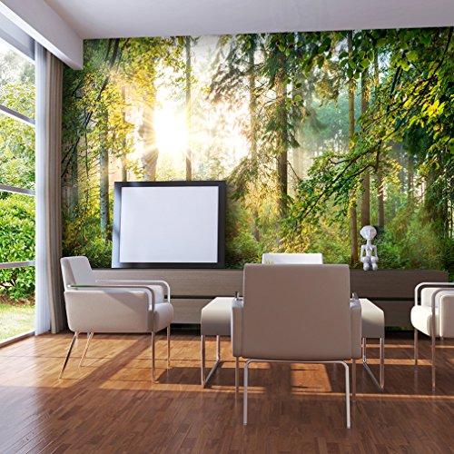decomonkey | Fototapete Wald grün 400x280 cm | VLIES TAPETE | moderne Wanddeko | Riesen Wandbild | Design | Fototapeten | Wandtapete | Landschaft Baum Bäume Natur FOC0007a84XL