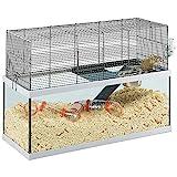 Ferplast Gabry 80 - Cage en verre pour gerbilles avec accessoires