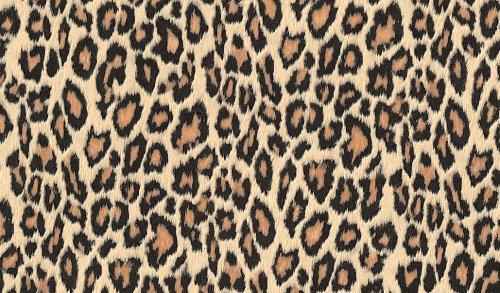Fablon Klebefolie Leopard, 45 cm x 2 m (Leopard-folie)