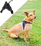 Molosser Hundegeschirr für Kleine Mittelgroße Große Hunde und Welpen, Reflektierend Brustgeschirr Sicherheitsgeschirr Hund ausbruchsicher gefüttert, Gr. S