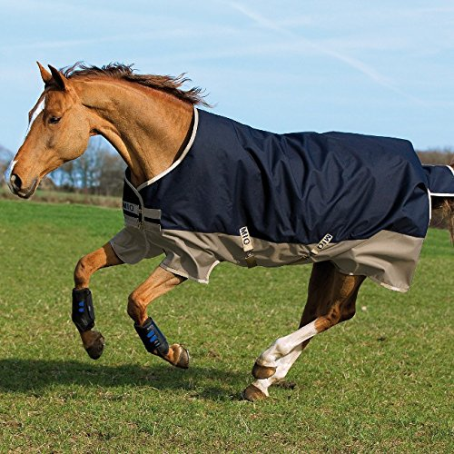 Horseware Mio Turnout medium 200g -Navy & Tan with Navy
