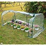 Outsunny - Invernadero caseta 200x100x80 acero y plastico jardin terraza cultivo plantas