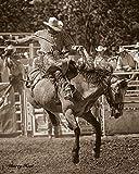 Daim UltraMat Barry Hart Western Pferd Cowboy, Rodeo Poster (wählen Sie Größe Foto von Print), 55.9x68.6 Print