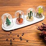 """Spice Shakers - Shakers """"Quattro Stagioni"""" per Spezie con all' interno 4 differenti alberi più vassoio"""