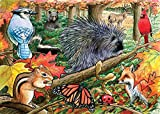 Cobble Hill Eastern Woodlands Jigsaw Puzzle, 35-Piece