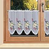 SeGaTeX home fashion Scheibengardine Vögel auf Blumenzweig Scheibenhänger mit Farbig gesticketer Plauner Spitze