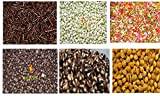 #9: Leeve Combo Set of 6 in one Pack - Dark | White | Butterscotch Nuts | Twins | Rainbow Vermicelli | Chocolate Strands - 200gms