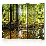 murando Raumteiler Wald Baum Natur Foto Paravent 225x172 cm beidseitig auf Vlies-Leinwand Bedruckt Trennwand Spanische Wand Sichtschutz Raumtrenner grün c-B-0183-z-c