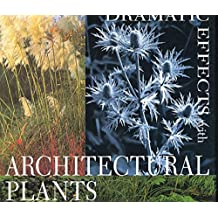 Dramatic Effects with Architectural Plants