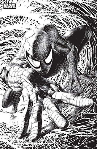 Spider-Man n9 Variant Angoulme