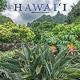 Hawaii 2019 - 18-Monatskalender mit freier TravelDays-App (Wall-Kalender)