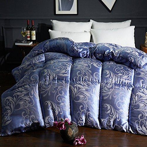 MMM Printemps et automne Quilt Air conditionné Quilt Double Individuel plus épais Coton Quilts Literie d'hiver ( Couleur : #1 , taille : 200*230cm(3.5kg) )