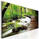 Bilder 100x40 cm – XL Format - Leinwand - Fertig Aufgespannt - Top - Wandbilder - Wand Bild - Kunstdrucke - Wandbild - Wald grün Baum Natur Landschaft c-B-0151-b-a 100x40 cm B&D XXL