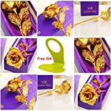 #10: House of Quirk Great Valentine's Gift 24K Gold Rose With Gift Box And Carry Bag - Best Gift For Loves Ones, Valentine's Day, Mother's Day, Anniversary, Lover's Flower Gold Dipped Rose With Gift Box For Women Girls Gifts. (GOLD)