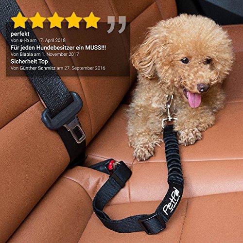 Hunde-Sicherheits-Gurt von PetPäl für Auto-Anschnaller | Premium Autogurt-Adapter für Sicherheits-Geschirr +2 Gratis Abstracts | Bester Hundegurt mit elastischer, verstellbarer Ruckdämpfung | Verbindungsgurt aus Robustem Nylon für Höchste Sicherheit - 2