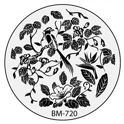 Stamping Pochoir Plate BM 720 Bundle Monster Fleurs Flower Tribal Nail Art Design