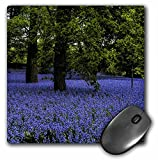 Bell Mouse Pads - Best Reviews Guide