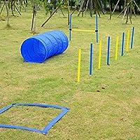 PawHut D07-004 Hund Agility Slalom Tunnel Übung Sprungring Hundesport Training Reifen Hürde Set Modell 2, blau / gelb