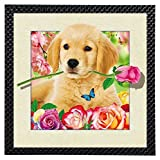 Best Dog Frame - 100% Eye Catching Awesome 3DIMAX/5D Effect Photo Frame Review