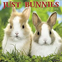 Just Bunnies 2018 Calendar