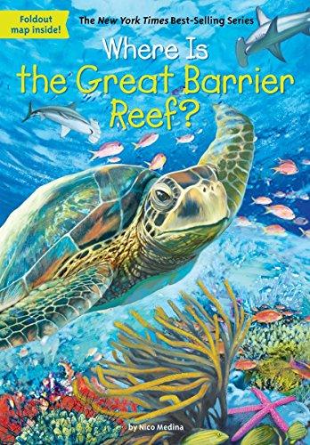 Where Is the Great Barrier Reef? por Nico Medina
