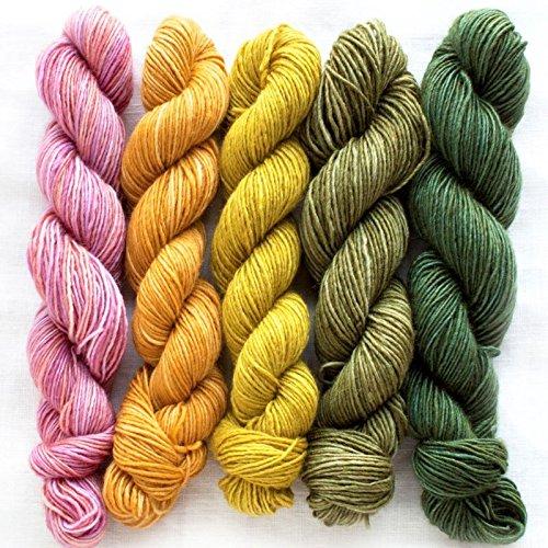 Manos Del Uruguay Silk Blend Fino Mini-Skein Set 4 Dorothea, 100g (5x20g) Merino Extrafine + Seide, handgefärbt mit wunderschönem Farbverlauf. -