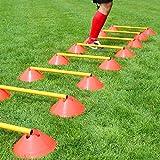 Mini-Hürden, 10er Set, mit Stangen 50 cm, orange/gelb mit Tragetasche, für Teamsportbedarf - Fußballtraining