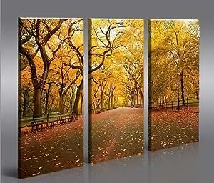 Central park 3p quadri moderni pronti da appendere for Appendere quadri senza chiodi ikea