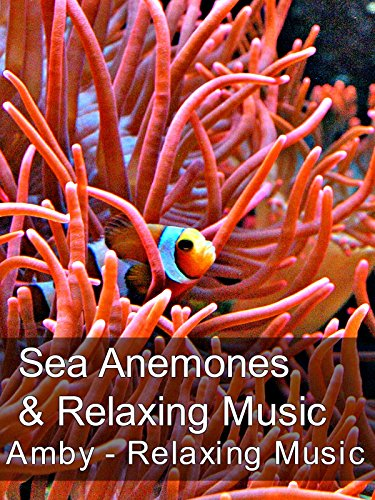 sea-anemones-relaxing-music-amby-relaxing-music-ov